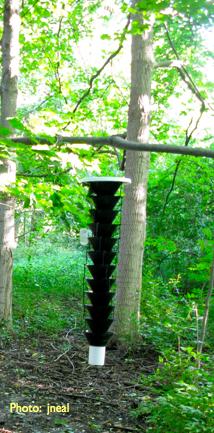 Lindgren Funnel Trap