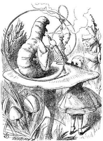 Caterpillar With Hookah