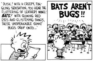 CalvinHobbes_bats_report_2371
