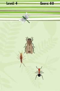 insectSmasher