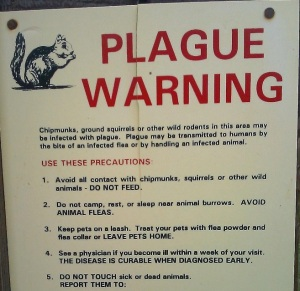 Plague Warning